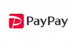 paypay-online-yahoo-shoping-etc.jpg
